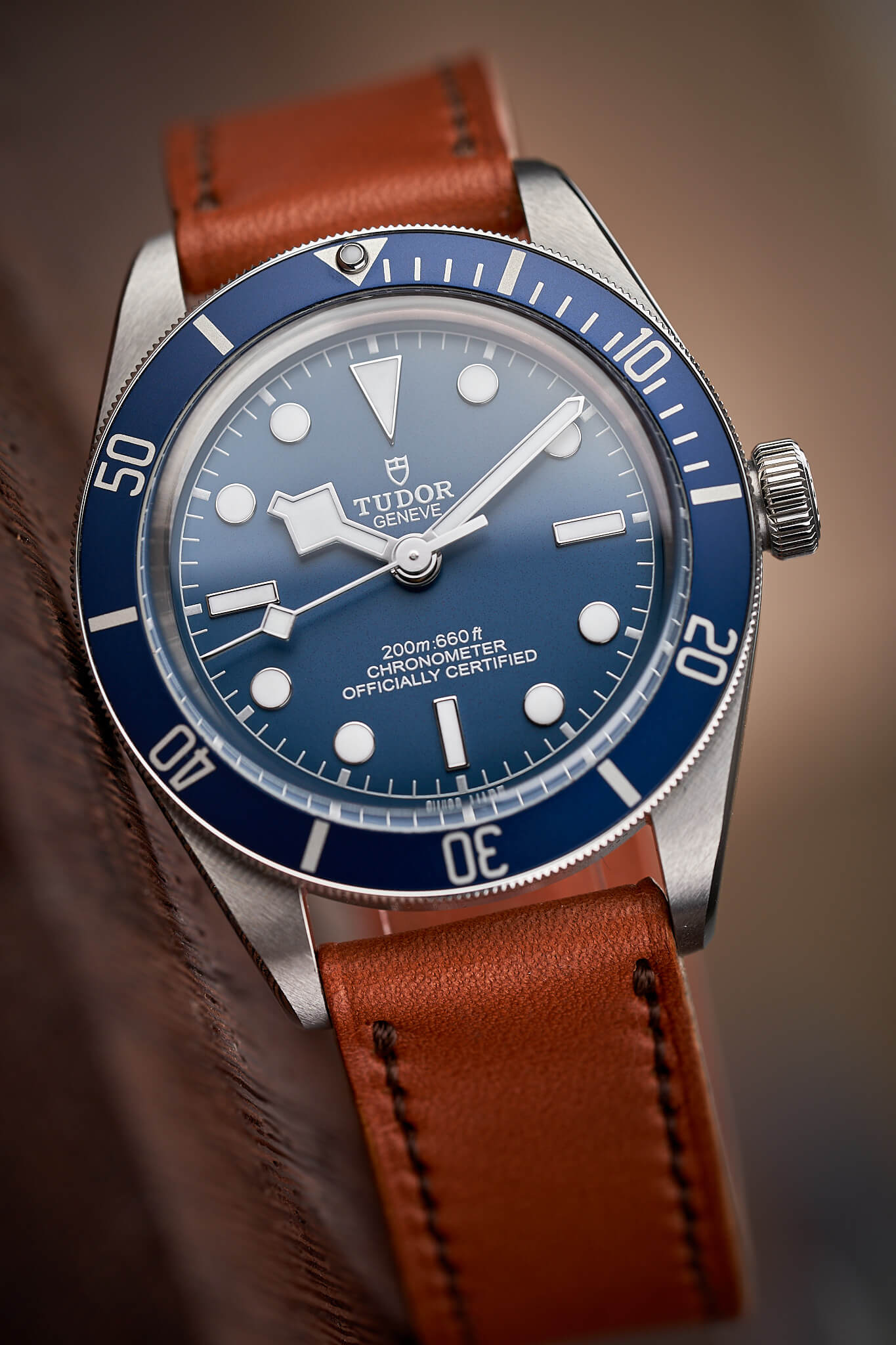 Tudor-Black-Bay-58-Navy-Blue-M79030b-46